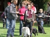 andere (11)